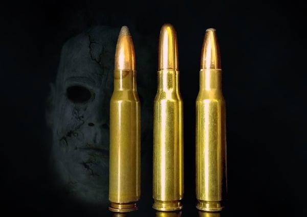 scary-308win-2